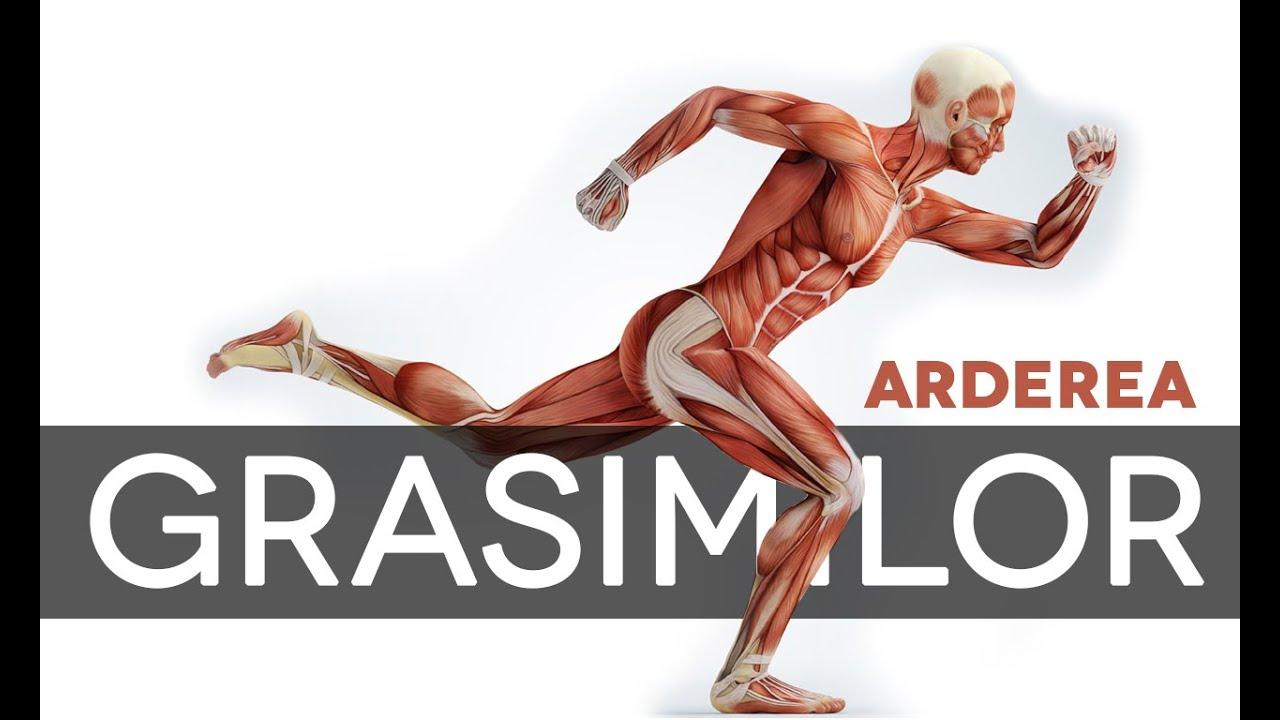 creșteți arderea grăsimilor metabolice
