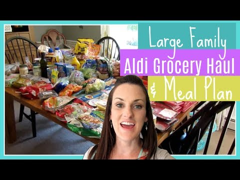 Large Family Aldi Grocery Haul & Plan