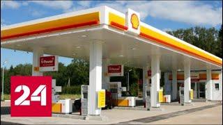 Автоматический Заработок в Интернете   Shell Пообещала Путину Открывать по Одной Автозаправке в Неделю - Россия 24