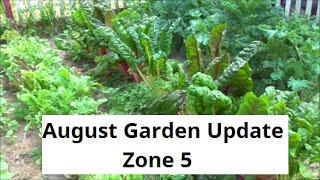 August Vegetable and Flower Garden Update: Zone 5