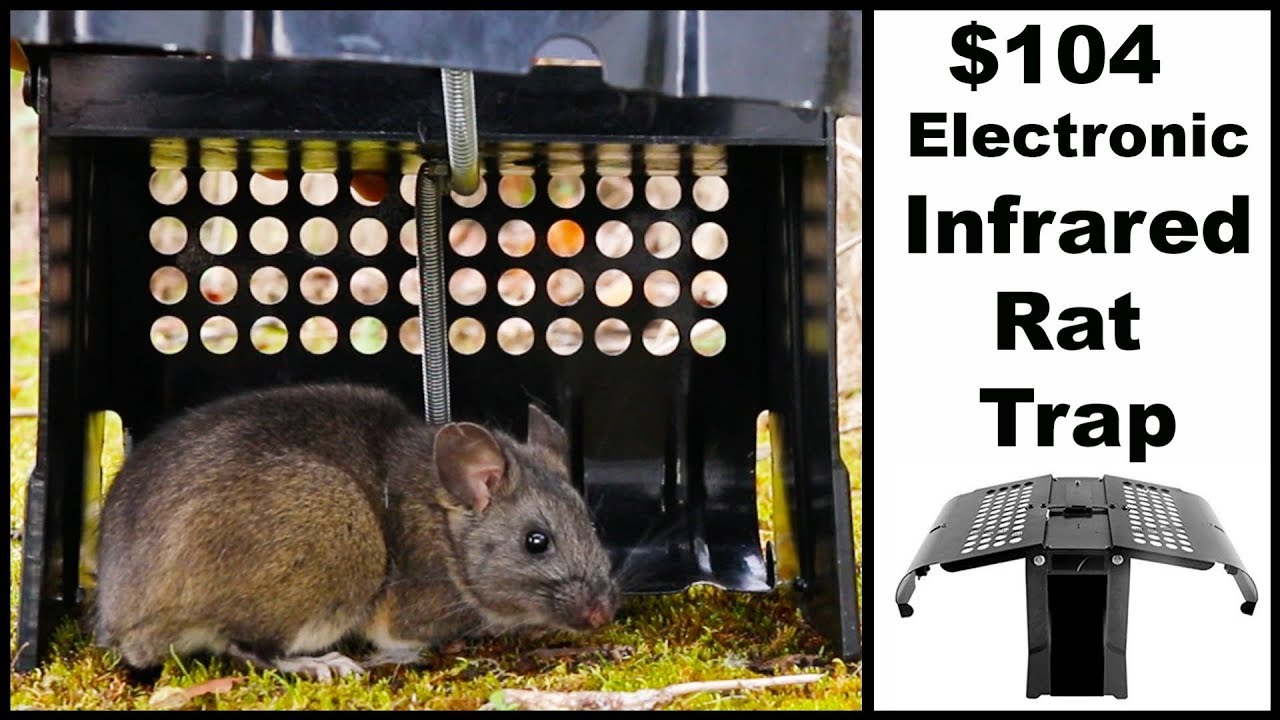 104-electronic-infrared-automatic-rat-tap-mousetrap-monday