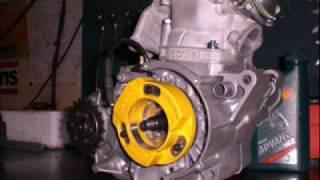 Aprilia RS 125 GP Replica