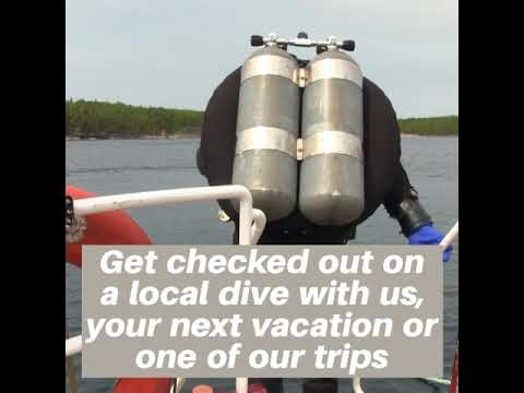 Courses/Learn to Dive | Open Water Course