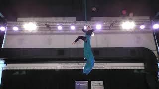 Яна Никашкина - Catwalk Dance Fest [pole dance, aerial]  30.04.18.