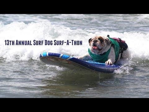 13th Annual Surf Dog Surf-A-Thon