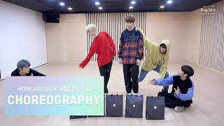 TXT (투모로우바이투게더) 'Cat & Dog' Dance Practice (Animal ver.)