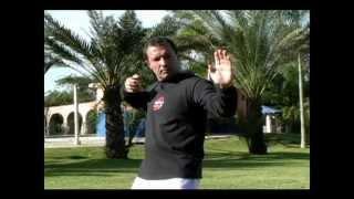 Dr. Efraín Hoffmann - Las 8 Joyas del Chi Kung 2da. Parte