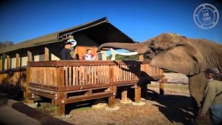 Vision Quest Safari Bed and Breakfast, Nov 2015
