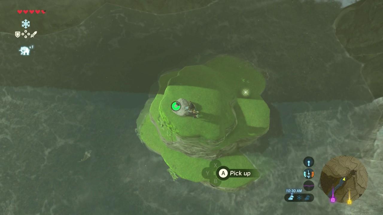 Misko The Great Bandit Zelda >> Zelda Breath Of The Wild Misko The Great Bandit Youtube