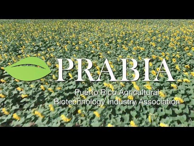 La industria de Biotecnología Agrícola en Puerto Rico
