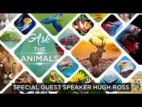 Dr. Hugh Ross Conference Weekend // Session 2  // Ask the Animals