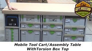 I make this very cool mobile assembly table/tool cart that has a torsion box top. It is designed to house Festool Systainers (18 of them