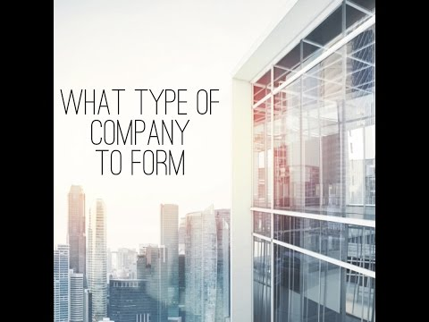 What Type of Company to Form