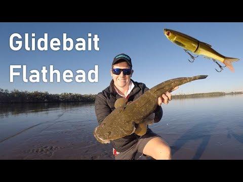 SWIMBAIT Flathead Fishing, South East Queensland