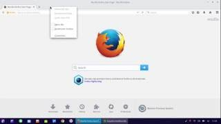 Colocar, Mudar para português a Linguagem do Navegador Mozila Firefox (Deepin Linux)