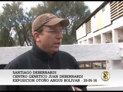 20-05-2016 - SANTIAGO DEBERNARDI - EXPO. ANGUS BOLIVAR