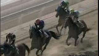2009年度福山競馬アラ系A1競走「葉月特別」