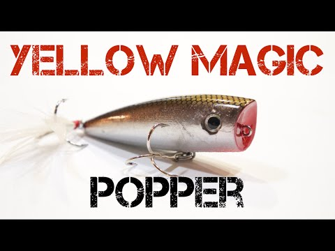 Image result for yellow magic fishing logo