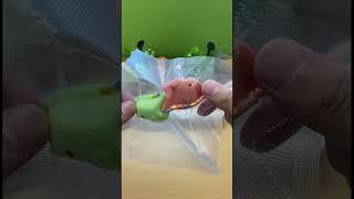 추석맞이 진공포장기로 공룡고기 보관 하는 방법 영상 […