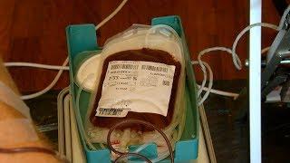 Blut Spenden im Selbstversuch
