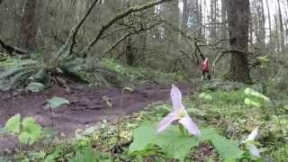 Gina Paletta, Portland run, Oregon USA