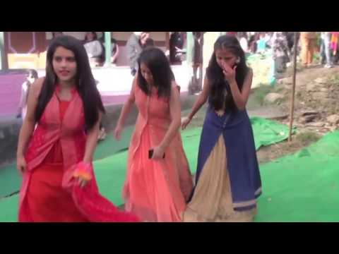 Himachali Wedding Pahari Dance at its best