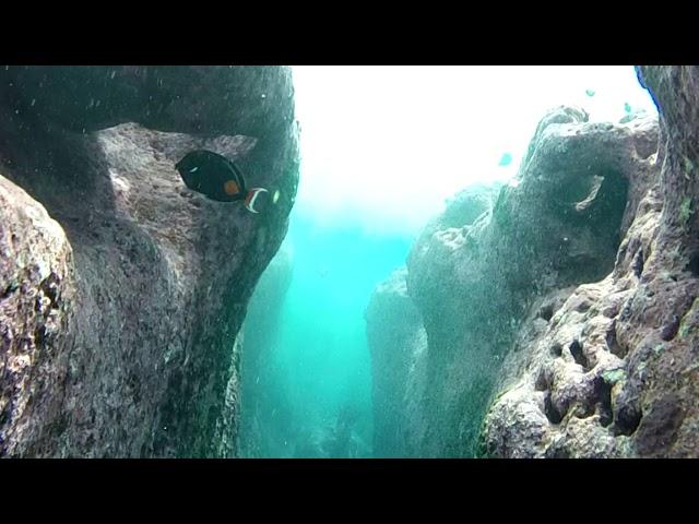 De l'autre cote du récif de Tikehau