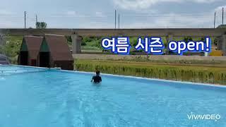 풍세관광농원 수영장오픈