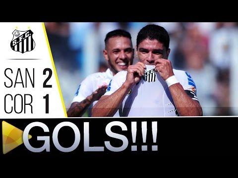 Santos 2 x 1 Coritiba | GOLS | Brasileirão (22/05/16)
