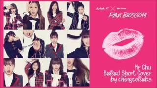 에이핑크(Apink) - Mr Chu 미스터 츄(Ballad Piano Cover)