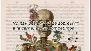 Julian Plenti - No Chance Survival ( Sub Español )