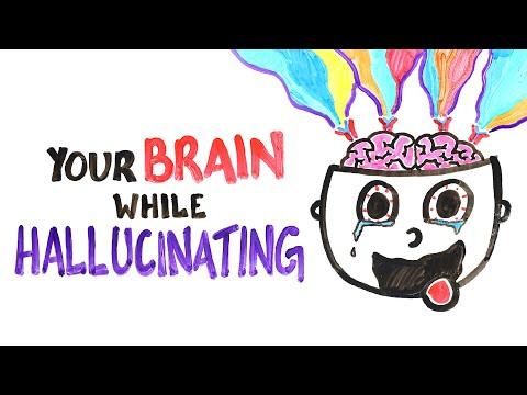 The Strange Reason Your Brain Hallucinates