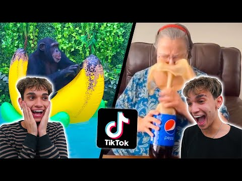 Funny TikTok Videos To Watch When You're BORED!