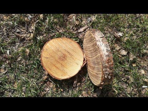 Поделки из спилов дерева для дачи своими руками фото для начинающих