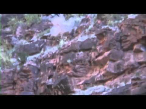 Travis Pastrana Backflips into the Grand Canyon