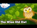 The Wise Old Owl   Kids Story In English   Animated Moral Stories For Kids In English