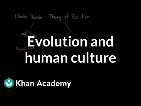 Evolution and human culture | Society and Culture | MCAT | Khan Academy