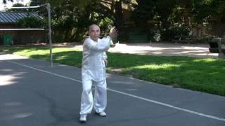 Xin Yi Liu He, Dragon Wags Tail. Master Wing Lau. 心意六合拳. 龍擺尾. 劉永順示範.