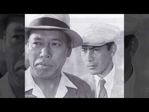 佐藤忠志 - 経歴