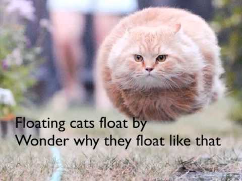 Floating Cats Youtube