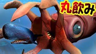 戦闘力∞!! 超巨大ダイオウイカ降臨!! 海の伝説クラーケンの強さはもはや異次元級だった!! サメの海で弱肉強食の壮絶バトル!! - Feed and Grow Fish #103