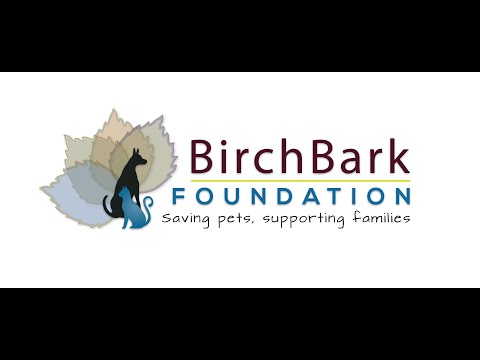 video:Fall in Love with BirchBark Foundation