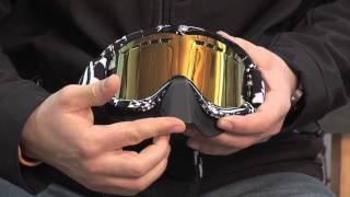 Gamma Sales:   Dragon Goggles