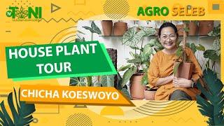 Chicha Koeswoyo, Sulap Hunian Mewah Jadi Kebun Hijau... ASRIIII BANGET!!
