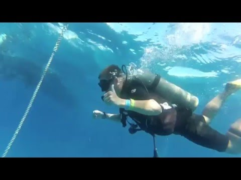 Freeport, Grand Bahamas Dive with Unexso - GoPro