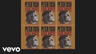 Peter Tosh - Downpressor Man (Audio)