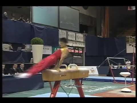 Hongtao Zhang (CHN), Maribor 2008, Pommel Horse: 1st