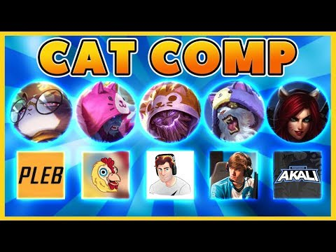 *CAT COMP 2019* THE CUTEST CAT COMP EVER (BATTLE CATS) - BunnyFuFuu