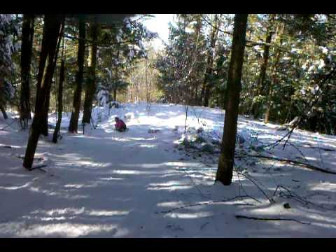 video-2010-01-23-11-15-30