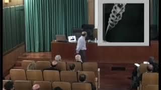 La evolución de hilos de torbellino con esquinas.... thumbnail
